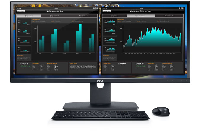 Dell UltraSharp U2913WM 29'' Monitor - Surround yourself with panoramic widescreen