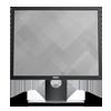 Monitor Dell P1917S