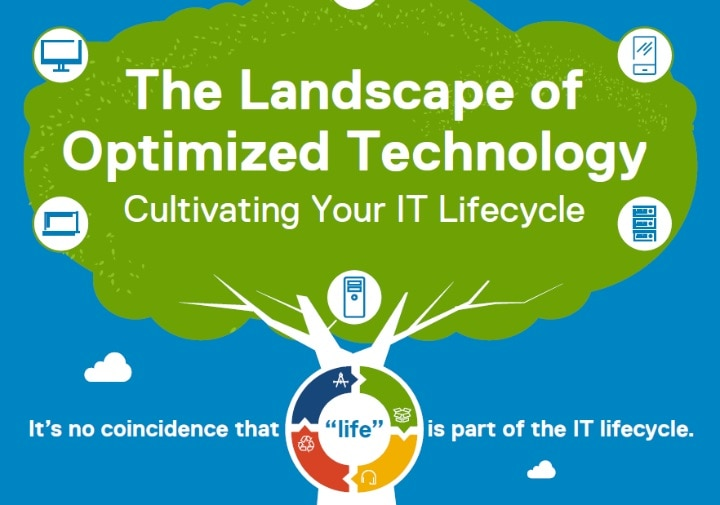 IT Support lifecycle services
